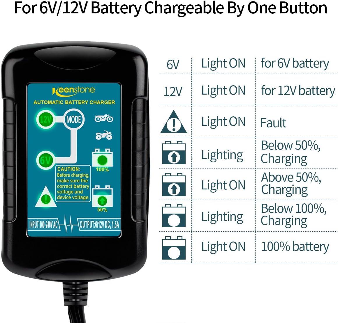 mictuning 6/V 12/V Auto bater/ía ladeger?T