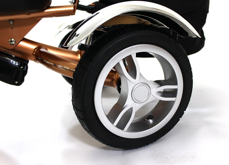 Amazon.com: 4 in1 Lexx Trike VIP Smart Kid de triciclo 3 ...