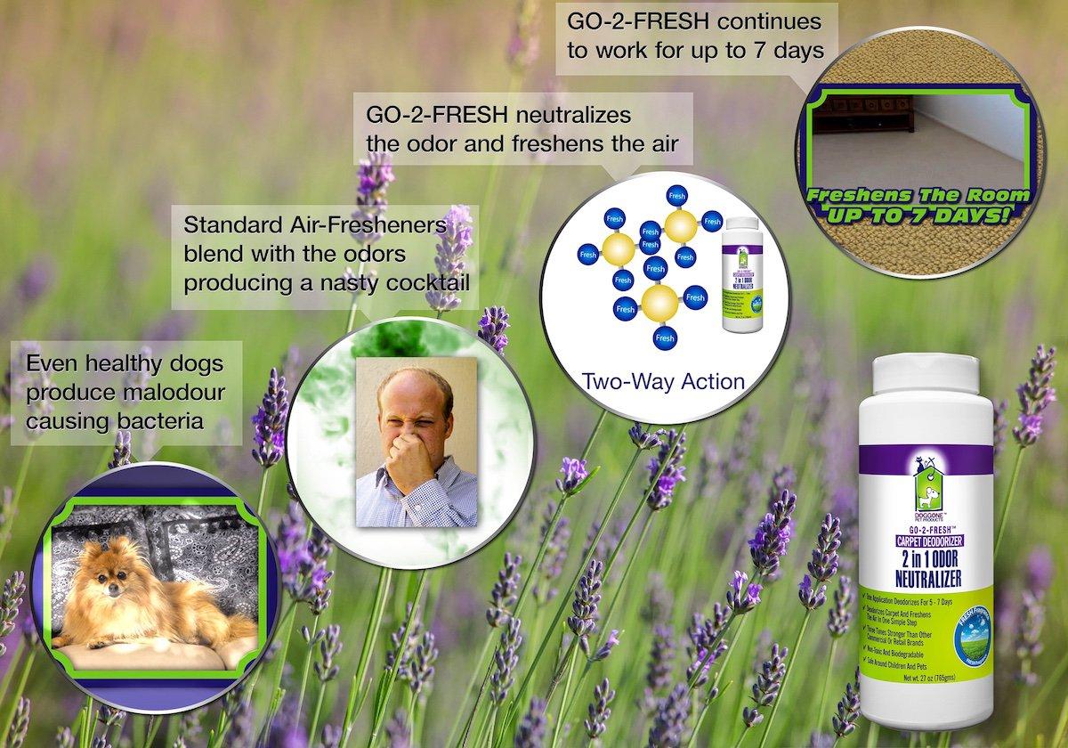 Amazon: Go2fresh Carpet Deodorizer, Odor Neutralizer: Pet Supplies