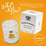 Aromatherapy Deodorizing Soy Candle for