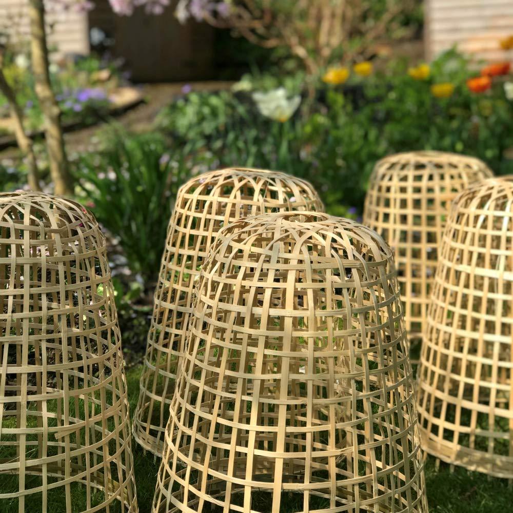 GardenSkill Bamboo Bell Cloche Garden Plant Protection Cover for Fruit Vegetables Flowers 0.3m diameter x 0.4m high, Pack 5