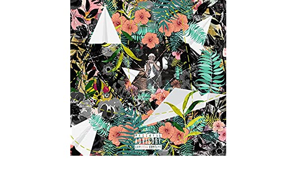tuki carter flowers and planes lyrics