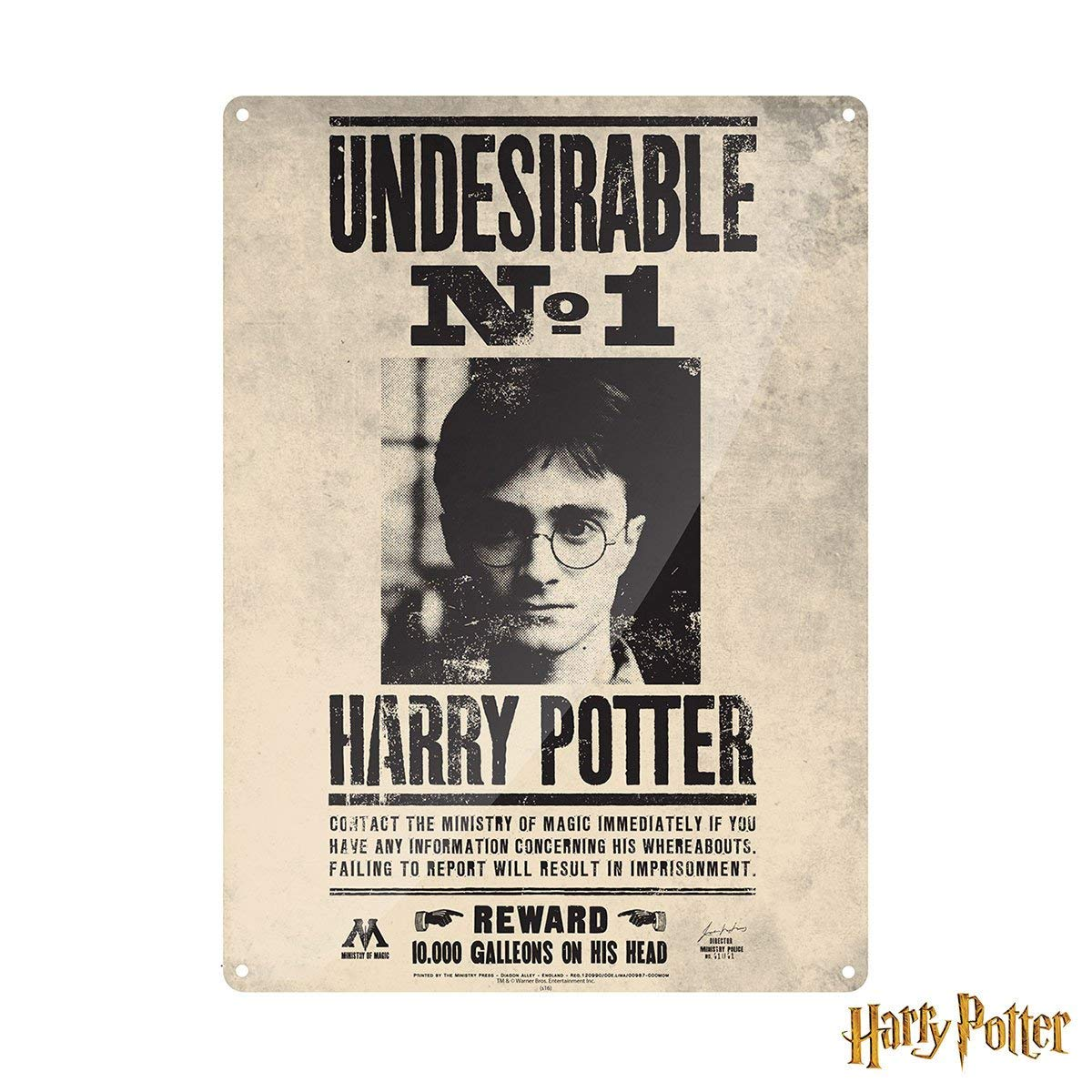 Amazon.com: Harry Potter ~ Large Wall Plaque/Sign (Metal/Tin ...