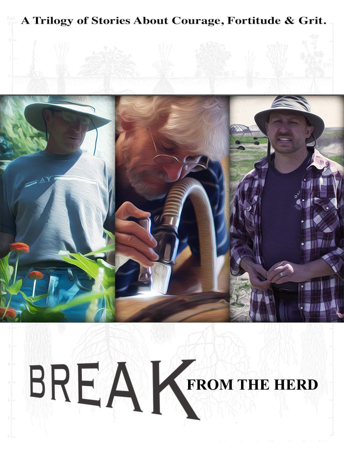 Break from the Herd