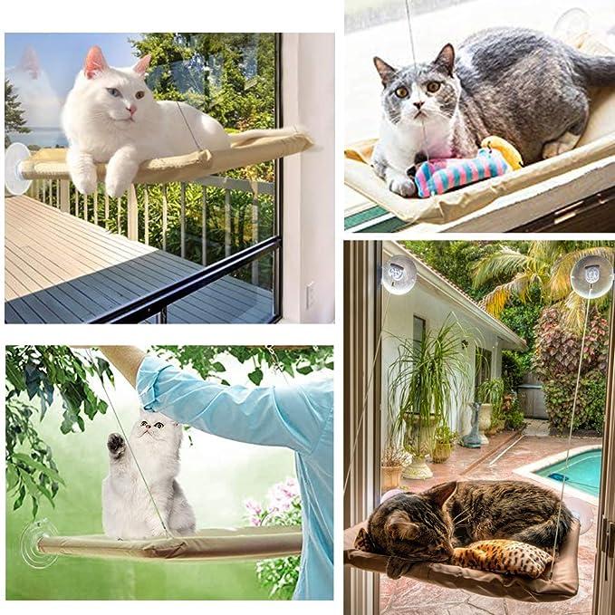 Amazon.com: Angela&Alex - Hamaca para ventana de gato con 2 ...