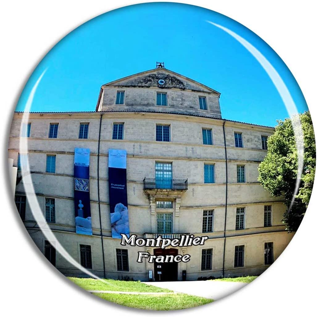 Montpellier France Musee Fabre Fridge Magnet Travel Gift Souvenir Collection 3D Crystal Glass Sticker