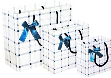 Gift Bags Bulk Pack Of 6 Pcs Different Sizes Small Medium Large
