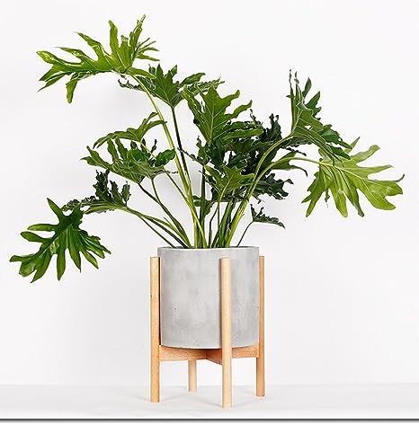 Amazoncom Riseon Mid Century Modern Plant Stand Wood Indoor
