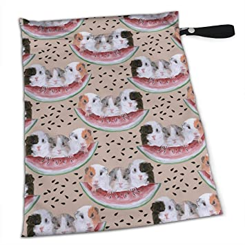 Amazon.com: Picnic Watermelon Guinea Pig Premium mojado ...