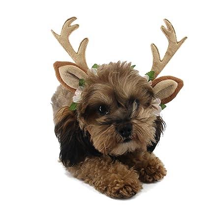 Amazoncom Rypet Dog Headband Halloween Costumes Holiday