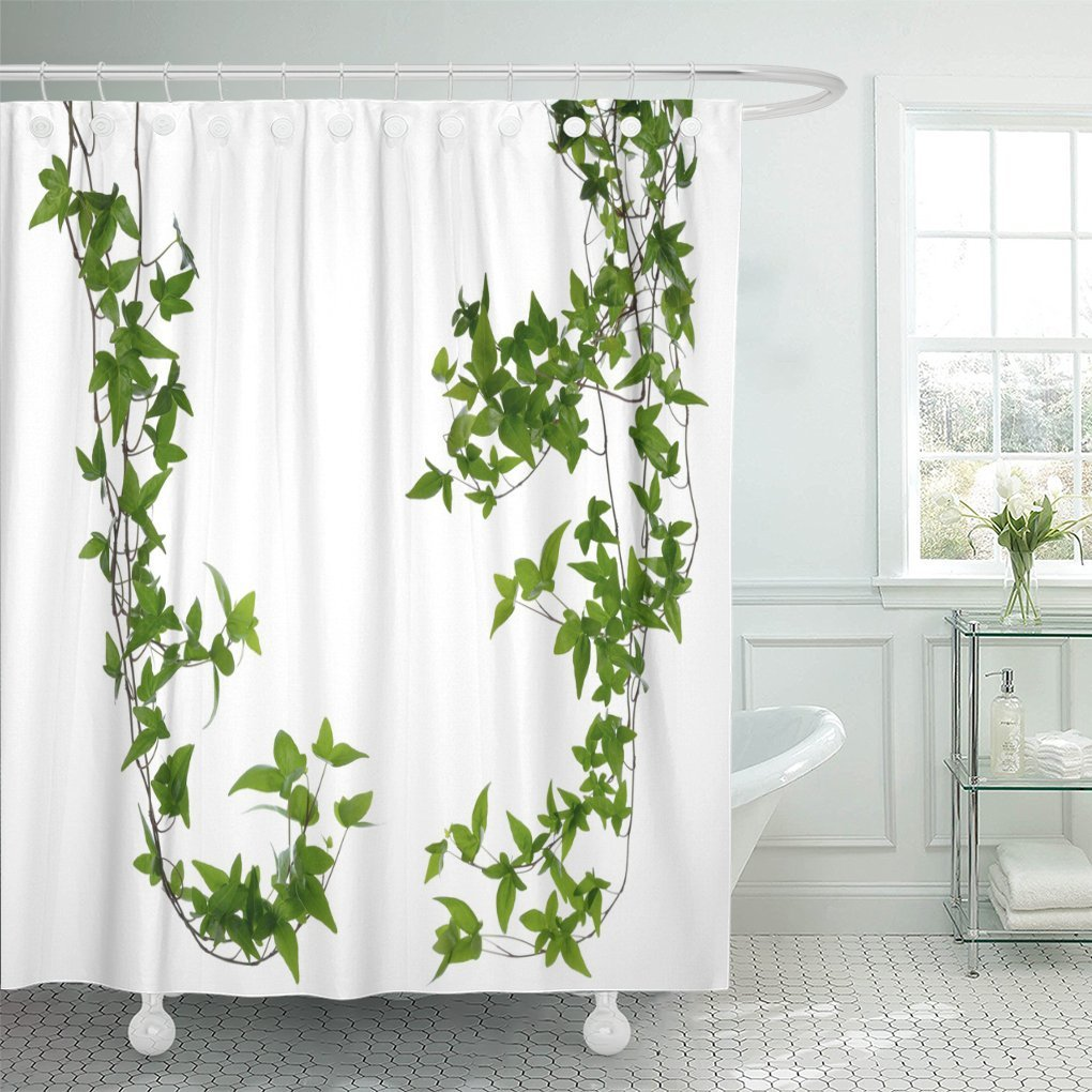 Emvency Shower Curtain Plant Of Few Dense Ivy Hedera Stems White Creeper With Young Green Leaves Vine 72 X Inches