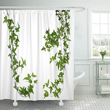 Emvency Shower Curtain Plant Of Few Dense Ivy Hedera Stems White Creeper With Young Green Leaves