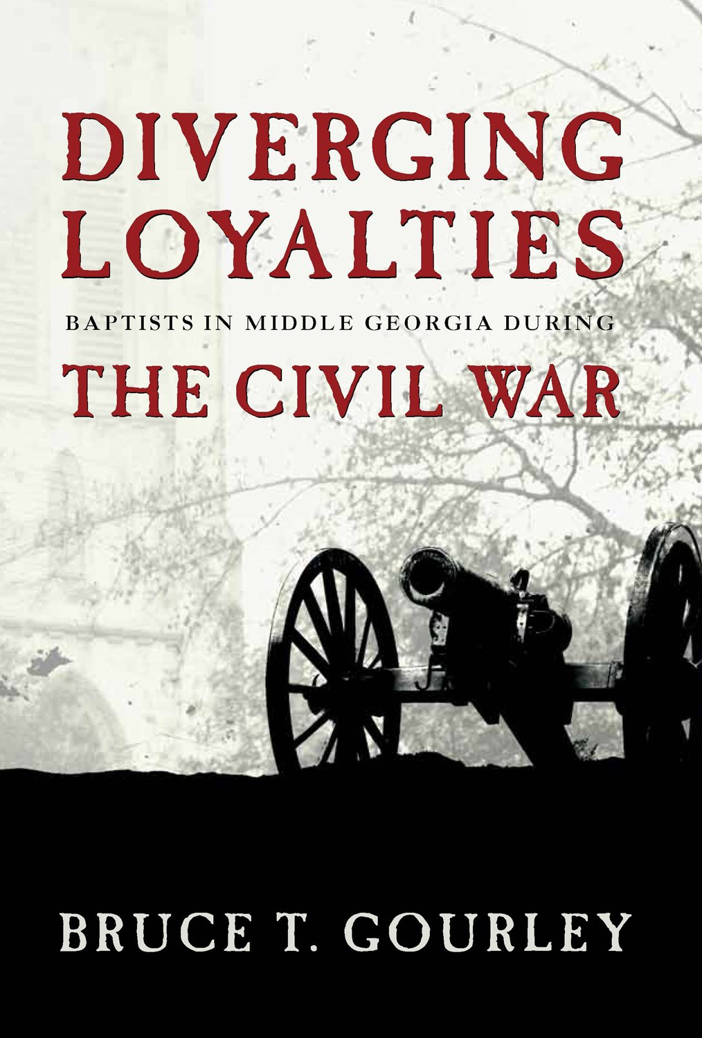 Diverging Loyalties: Baptists in Middle Georgia During the Civil War pdf epub