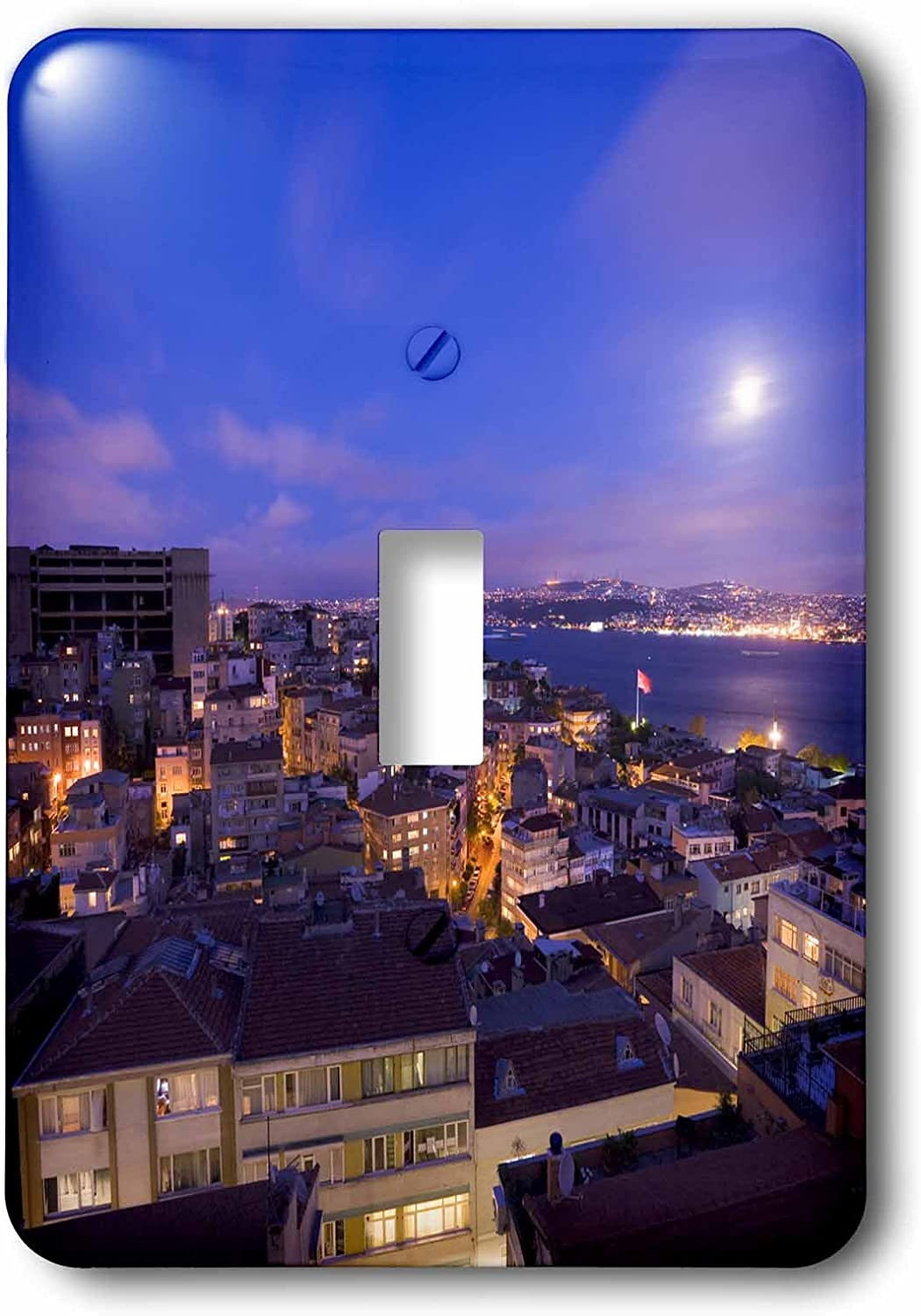 3dRose lsp/_75876/_1 Bosphorus as seen from Cihangir at night Istanbul Turkey Single Toggle Switch