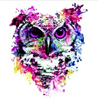 5D DIY Diamond Painting, Embroidery Painting Wall Sticker for Wall Decor - Painted Owl 12 x 12inch