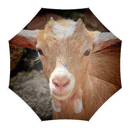 Cara de cabra joven patrón impresión personalizadas de viaje, diseño de paraguas resistente al viento