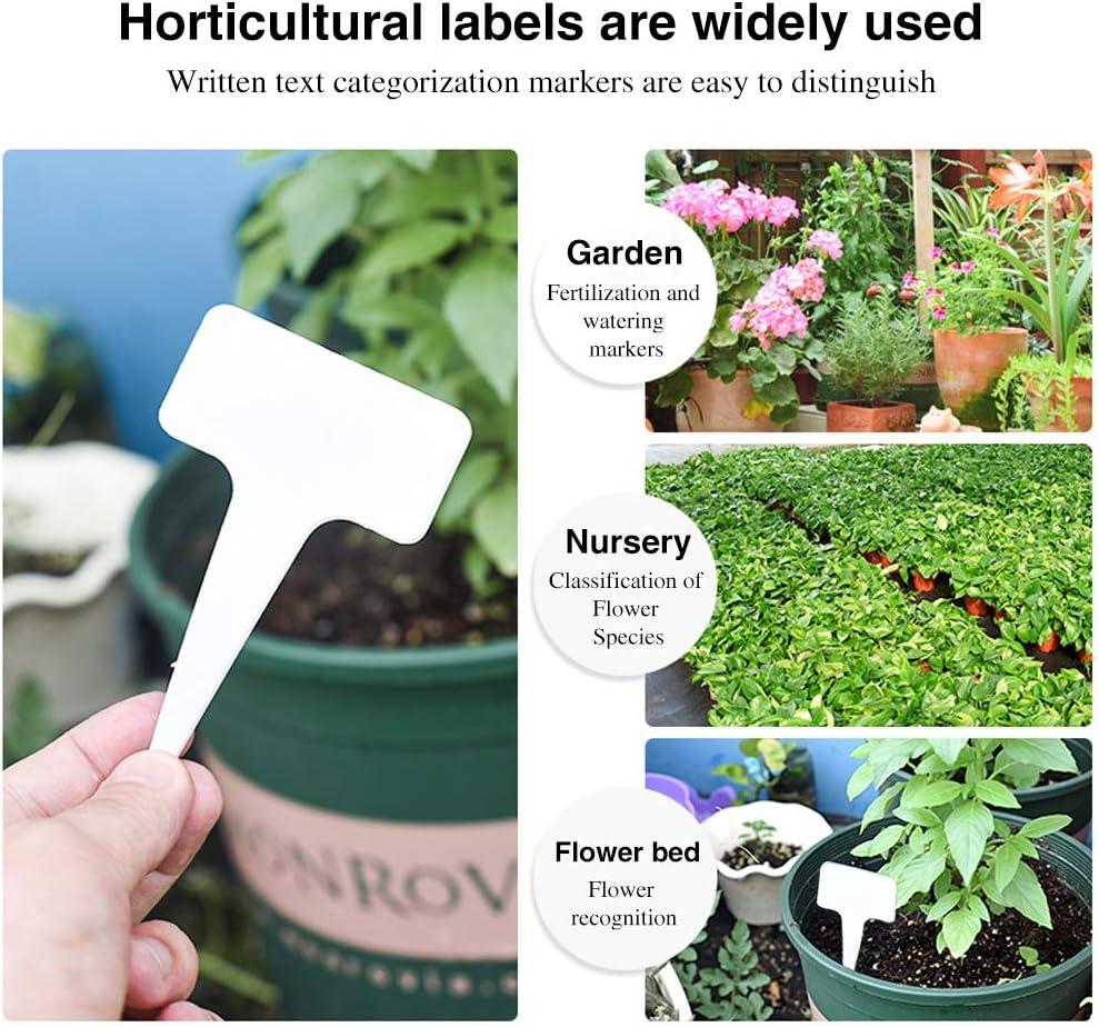 HAKACC - Conector Mini para Plantas (100 Unidades) Etiquetas para ...