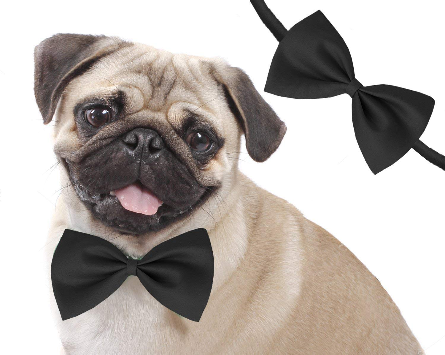 da916146b0e4 Buy Pet Dog and Cats Bow Tie Online at Low Prices in India - Amazon.in
