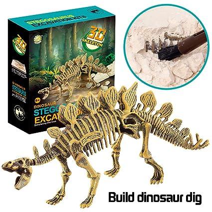 Amazon com: Dinosaur Excavation Kits for Kids, Kids Science