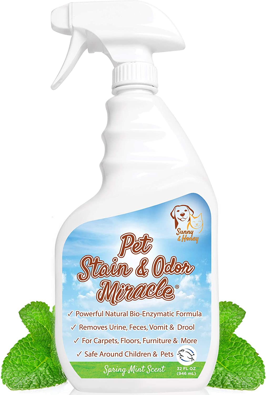 Amazon.com: Pet Stain & Odor Miracle - The Best Enzyme Cleaner for Dog Urine  Cat Pee Feces Vomit, Enzymatic Solution Cleans Carpet Rug Car Upholstery  Couch Mattress Furniture, Natural Eliminator (S/M 32FL