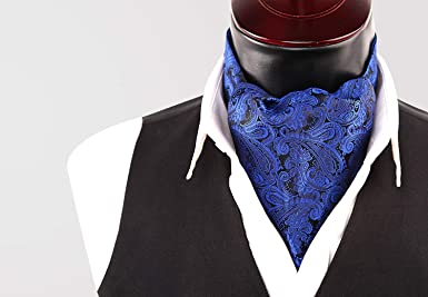 Alizeal Multicolor Paisley-Corbata y Pañuelo para Hombre Azul ...