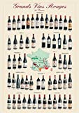 Empire 536709 Educational Poster French Wines 68 x 98 cm