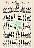 empireposter - Educational - Bildung - Grands Vins Rouges de France Französiche Weine  - Größe (cm), ca. 68x98 - Poster, NEU - Version in Englisch - Beschreibung: - Bildung, Lernposter - englische Version -