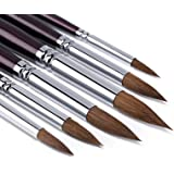 Artist Paint Brushes set-6pcs Sable Hair Round Point Tip Paint Brush Set for Watercolor/Oil/Acrylic/Crafts