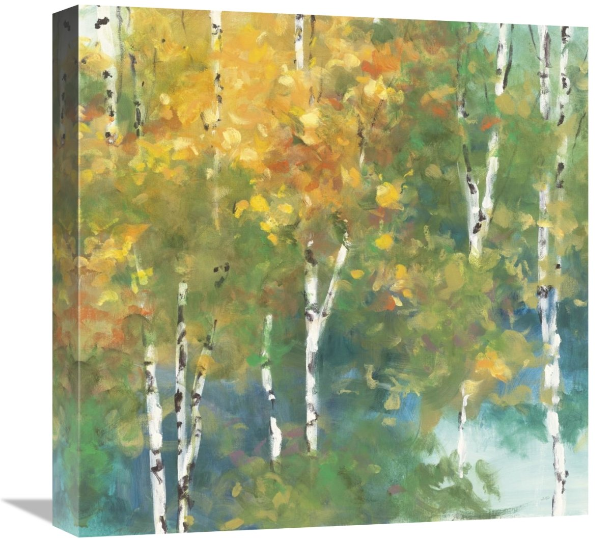 Confetti I Giclee Stretched Canvas Artwork 18 x 18 Global Gallery Julia Purinton