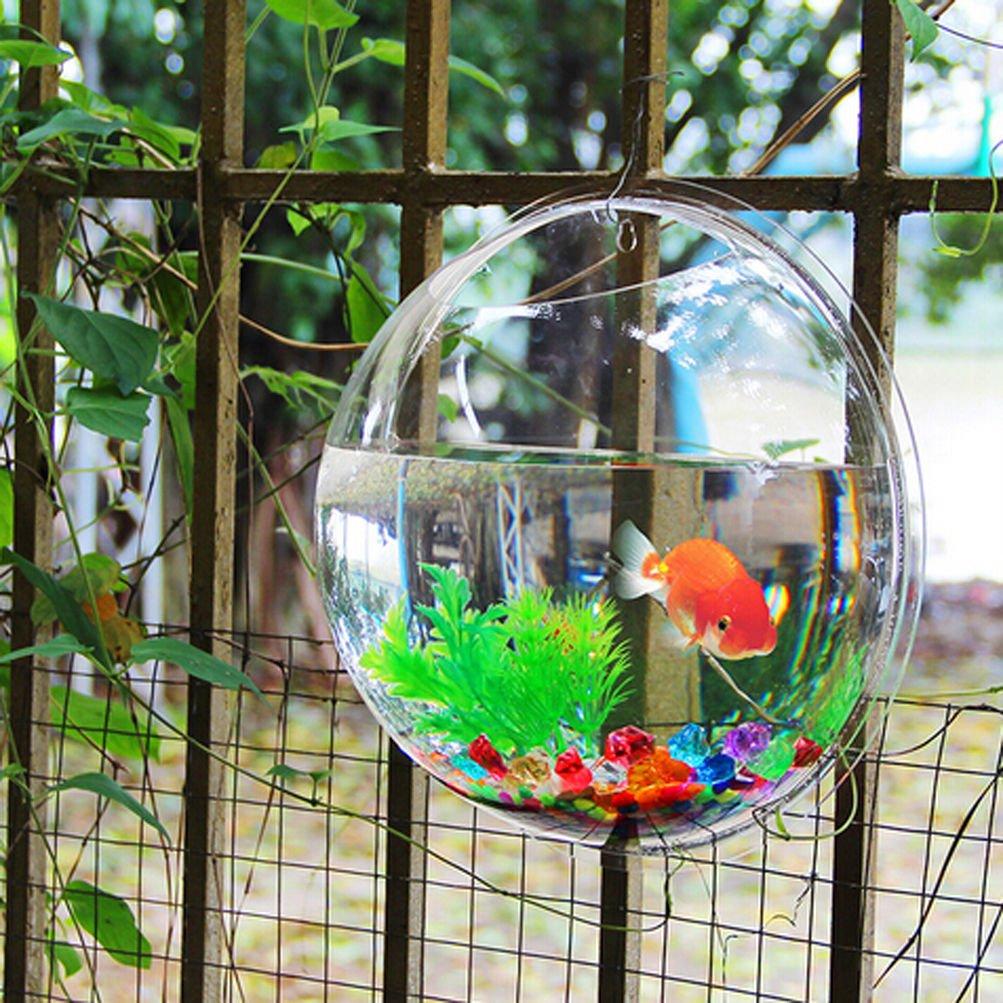 Amazon.com : Fish Bowl Wall Mount Betta Tank Aquarium Round ...