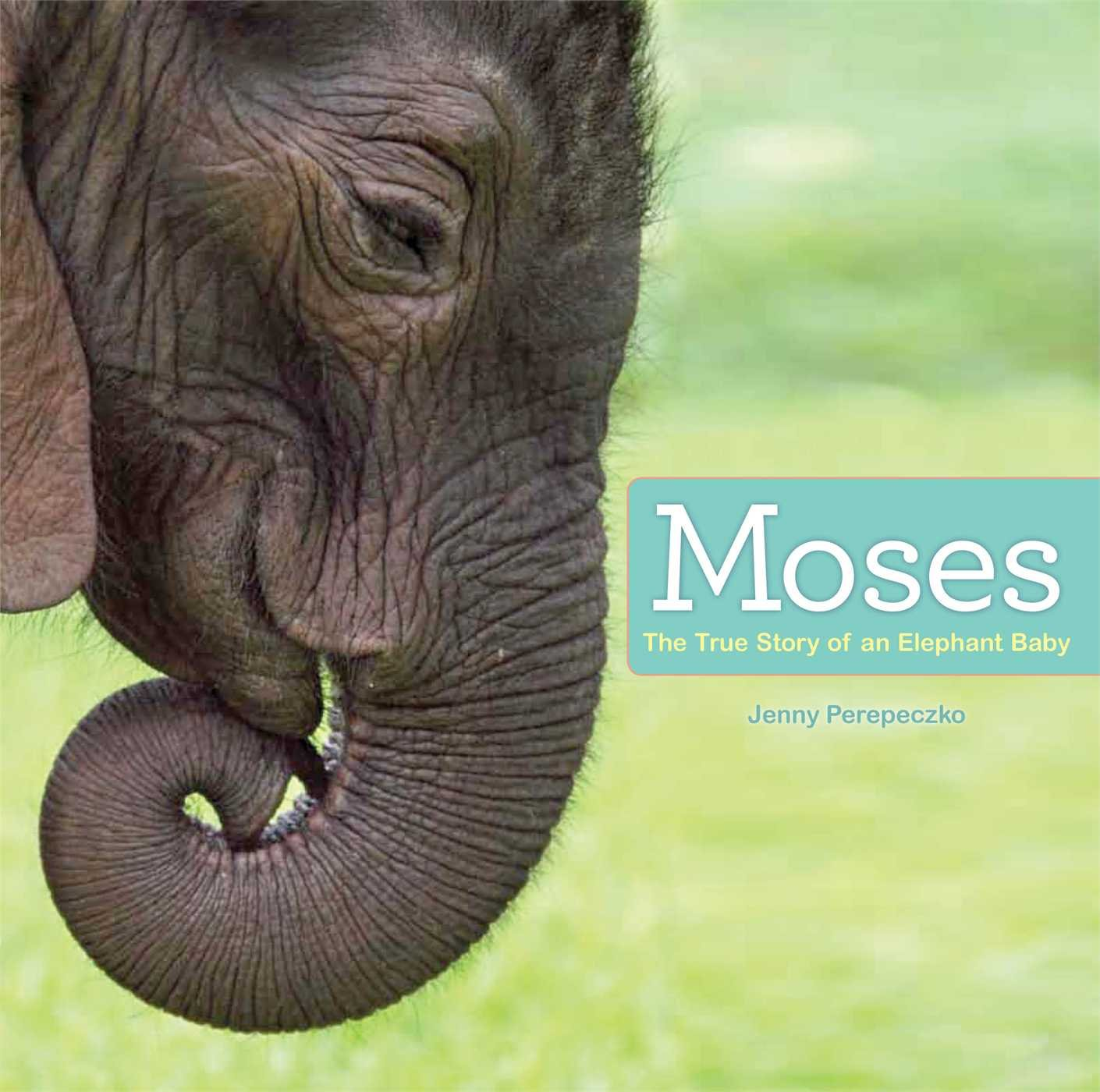 Moses: The True Story of an Elephant Baby ebook