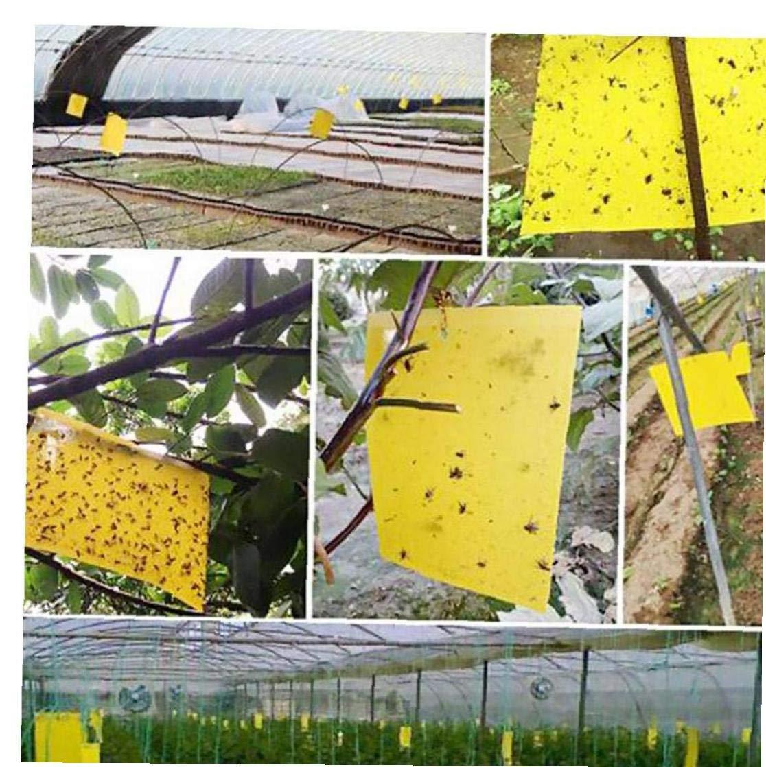 Sticky Fly Trap Trappola Adesiva Paper Fly Catcher Insetti Carta Doppia Faccia Fly Catcher Forniture da Giardino Serra per La Casa 10sheet Giallo