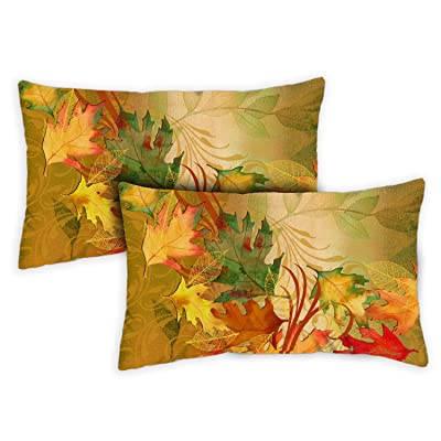 Toland Home Garden 731283 Autumn Aria 12 x 19 inch Indoor/Outdoor, Pillow with Insert (2-Pack) : Garden & Outdoor