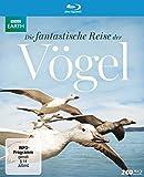 Die fantastische Reise der Vögel [Alemania] [Blu-ray]
