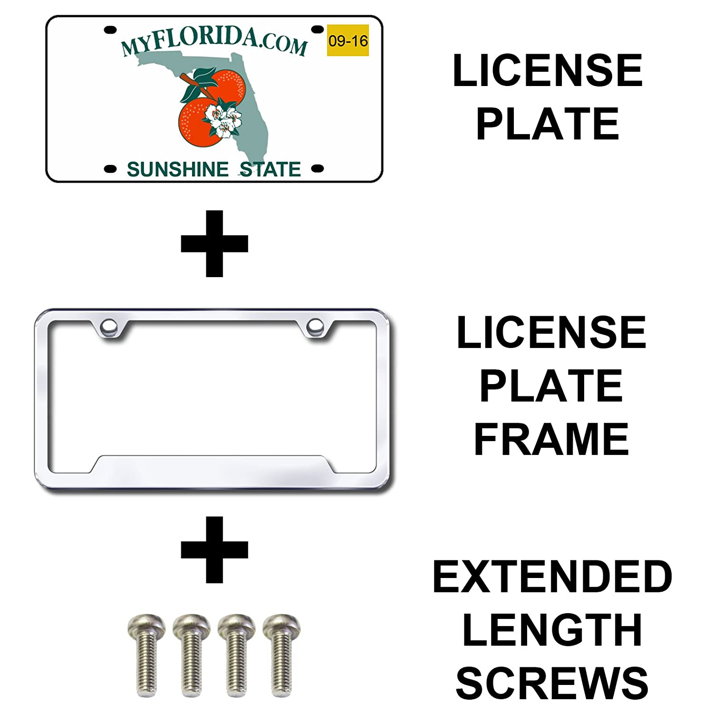 Prime Ave Stainless Steel License Plate Screws Standard Length, Silver Nissan /& Infiniti
