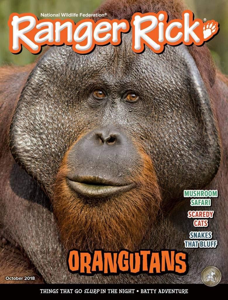 Ranger Rick: Amazon.com: Magazines