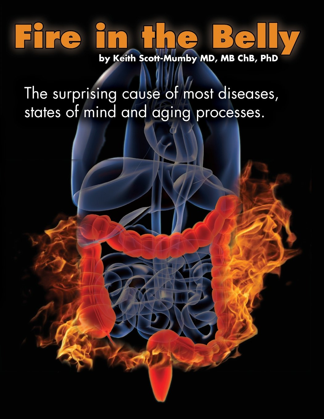 Fire In The Belly: The Surprising Cause of Most Diseases, States Of Mind and Aging Processes pdf epub