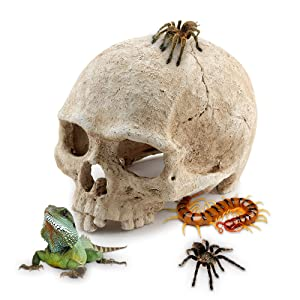 AROGEAR Aquarium Reptile House Resin Skull, Fish Tank Decoration Cave Family Daily Decoration