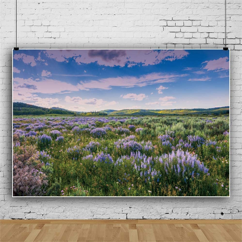 Leowefowa Beautiful Lavender Field Backdrop for Photography Vinyl Nature Landscape Background 10x8ft Child Kids Adult Portrait Shoot Studio Photo Props Party Decor Scenic Wallpaper