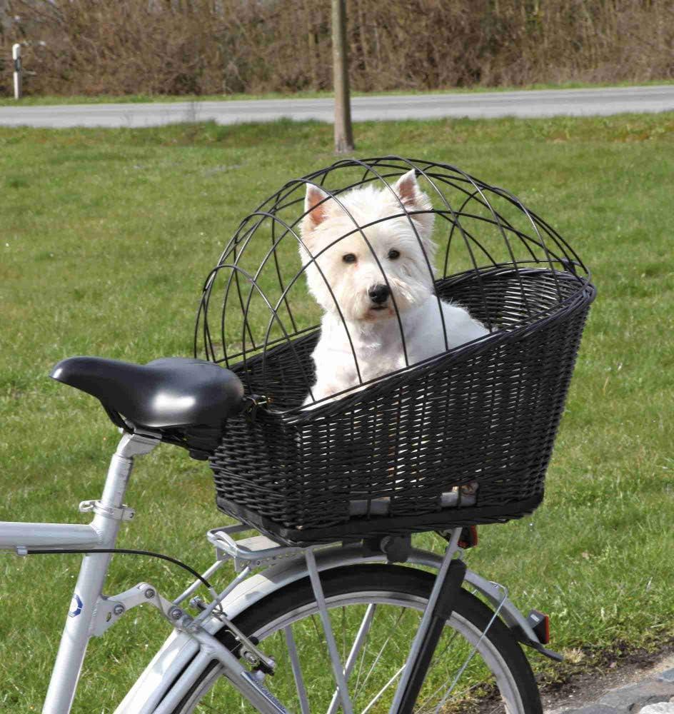 Mit einer Hundetransportbox Fahrrad bleiben Sie mobil - auch unterwegs