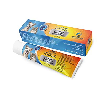 Andy Anand Organic Enzymatic Fluoride & Xylitol Free Herbal Toothpaste