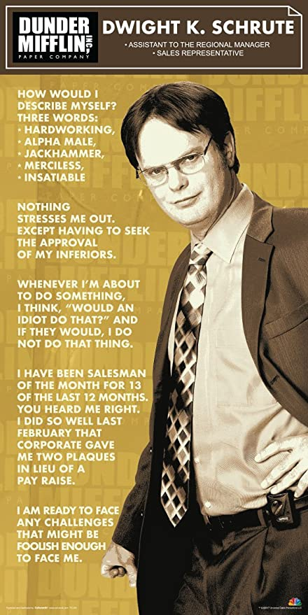 Culturenik The Office Dwight Shrute Corporate Ladder Dunder Mifflin Cast Group Workplace Comedy Tv Television Show Poster Print 12 By 24 Unframed