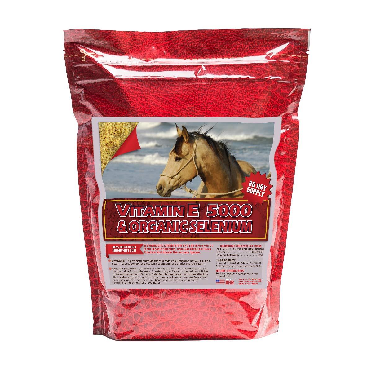 Horse Guard Vitamin E & Organic Selenium by Horse Guard