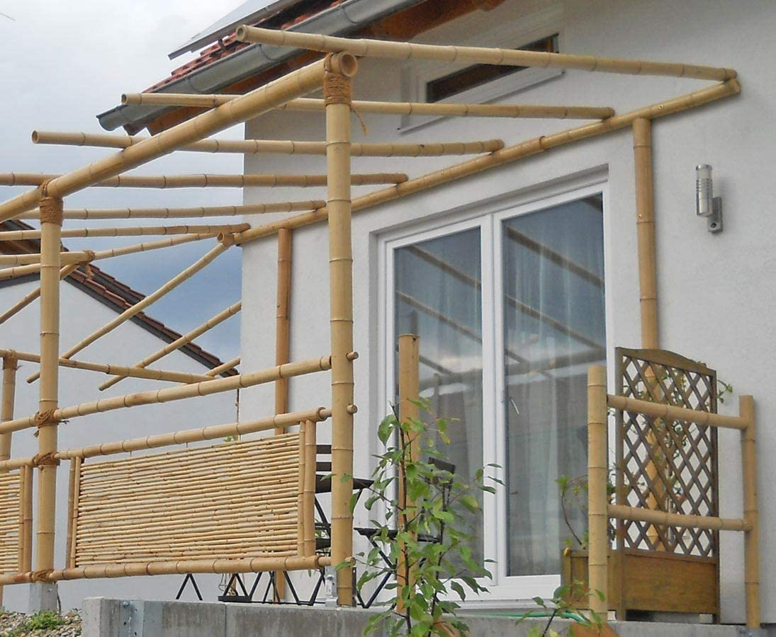 Bambú Pajita Moso 100 cm amarillo mediante. 2, 8 hasta 4 cm, blanqueado – bambú tubos, tubos de bambú, bambú tubos bambú Tubo – -> grande surtido de privacidad, bambú, juncos y