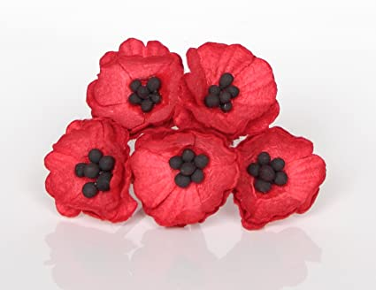 Amazon 50 paper poppy flowers for scrapbooking veterans day 50 paper poppy flowers for scrapbooking veterans day decoration by scrapflowers mightylinksfo