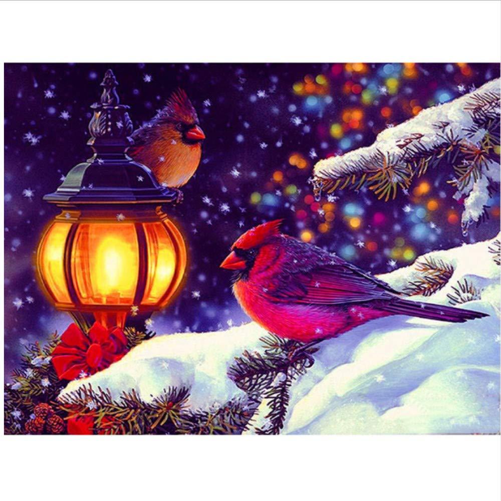 Hauptwanddekor DIY Geschenk Zwei Vögel In Der Verschneiten Nacht Nacht Nacht Acrylmalerei Malen Nach Zahlen Für Erwachsene Anfänger-Rahmen 40X50Cm B07PFX8LJY | Gemäßigten Kosten  2c69cb