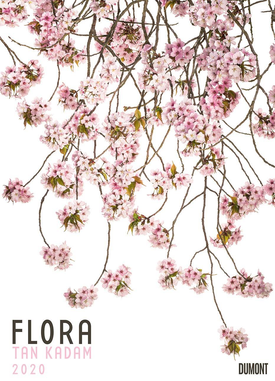 Flora 2020 – Blumen Kalender Von DUMONT– Foto Kunst – Poster Format 495 X 685 Cm