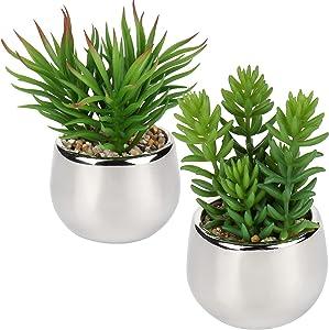 Artificial Succulent Plants Fake Succulents Small Plants in Golden Ceramic Potted Faux Succulents Aloe Plants Artificial Succulents in Pots for Home Office Desk Bathroom Shelf Decor