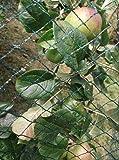 Nutley's Kitchen Gardens FLE08BN5 5 x 8m Woven Bird Net - Green