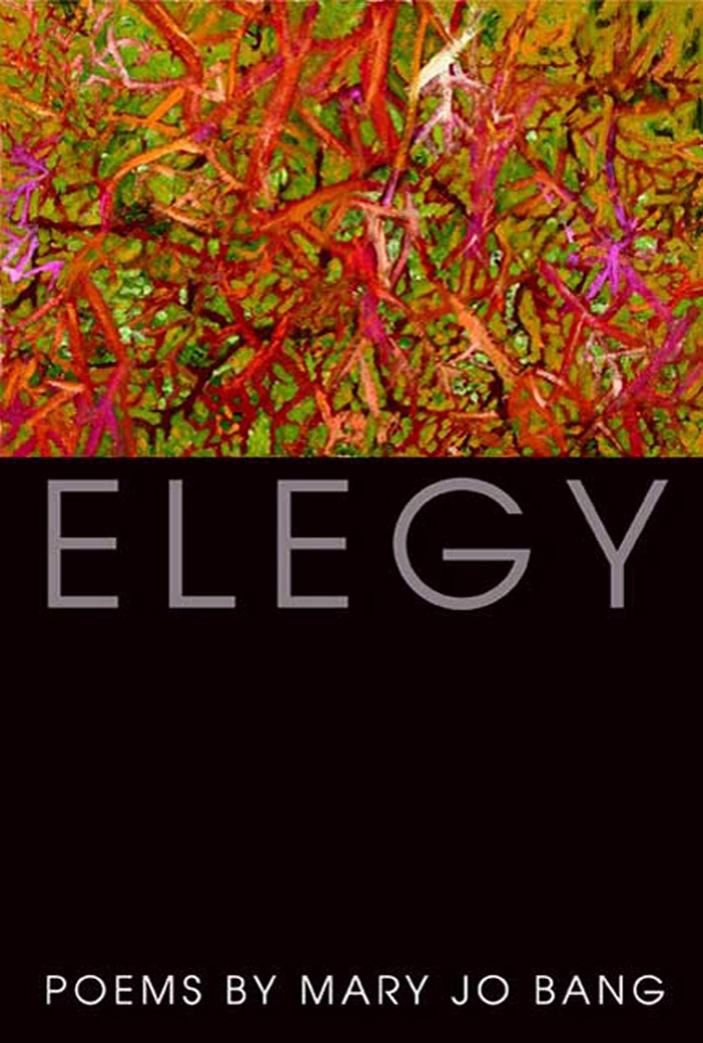 Elegy: Poems PDF